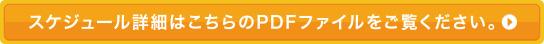スケジュール詳細はこちらのPDFファイルをご覧ください。